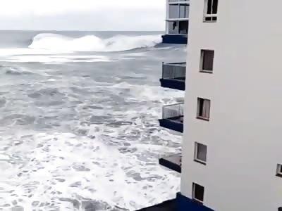 WTF Canary Islands