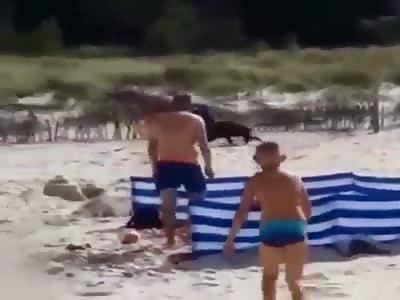 Wild Boar beach Atack