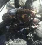 3 Female Cops Burned to Death Inside Car