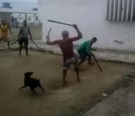 Crazy Machete Fight Filmed Inside a Prison in Brazil