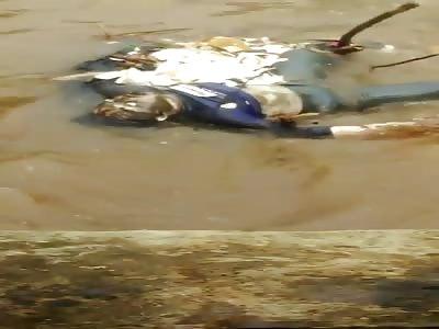 Dead Body Found Floating