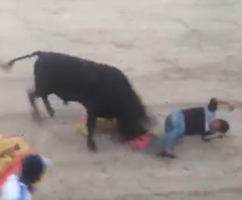 Bull vs. Bull Rider.... Bull Wins.