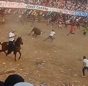 Bull Kills Man (2 Angles)