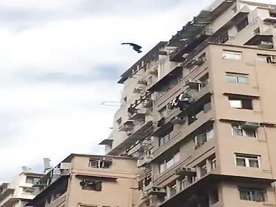 Birdman in hong kong