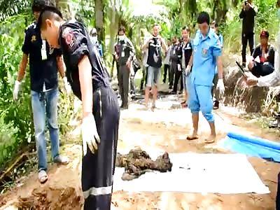 Digging up burned remains