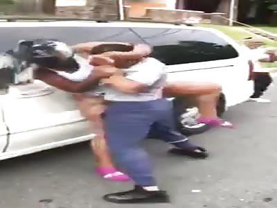 Niggers fighting
