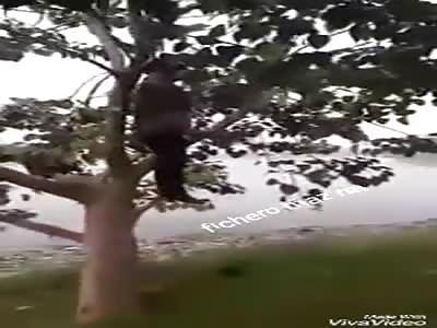 SUICIDIO BLUE WHALE: man hung as fruit