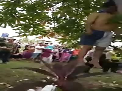 MAN HANGING THE TREE