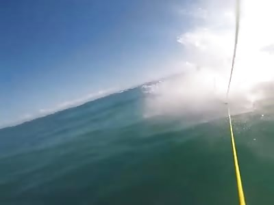 SURFER CHOCA AGAINST SHARK