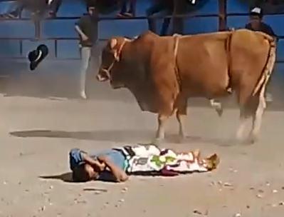 Crazy Bull Fucks Man's Day Up