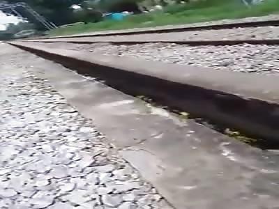 train wins