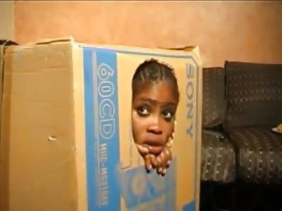Cock Sucking Crack Head In A Box…