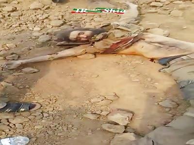 Iraqi Army Clearing the countryside of Qayyarah