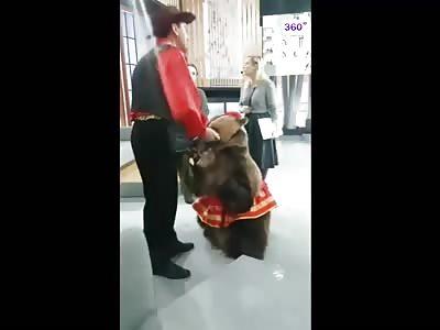 Never Surprise A Bear....