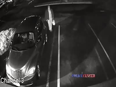 Police Release Footage of Senior Citizen Carjacking Fail