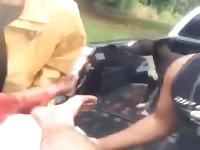 man suffer sharks attack wound