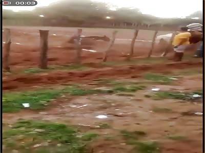 (Repost) horse race accident with extra bonus
