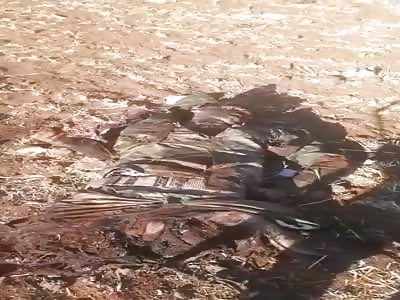 The bodies of dead mercenaries of the Assad regime on the Um Valad road on Dara Avenue.