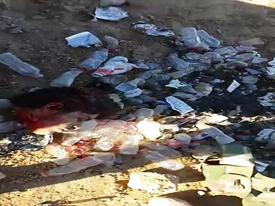 Iraqi soldiers show daesh heads terrorists