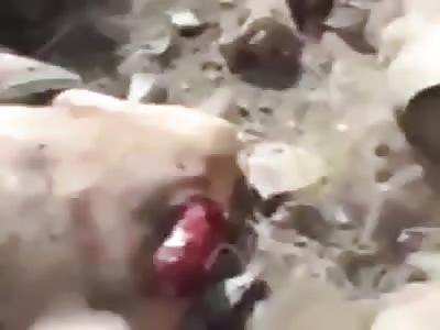 Turkish Army soldiers behead Kurdish militants