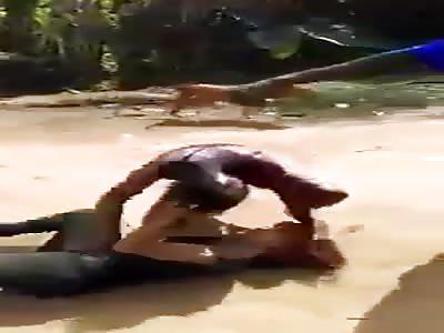 Crazy fight