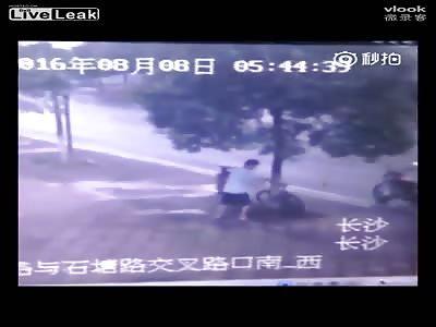 Man Saws Down Tree To Steal Bike