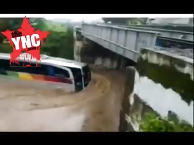 stupid coach driver