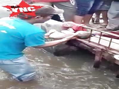 dead baby in the river found at  border of Dinoyo and Merjosari beside SDI Surya Buana Dinoyo