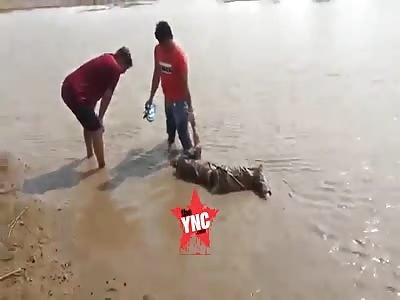 Body discovery  in Cambodia