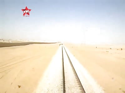 Train tramples camel