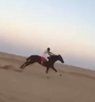 Heartbreaking Moment Horse Breaks its Legs During Race