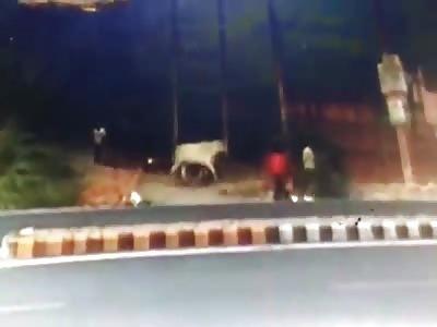 CCTV of Man Beaten to Death on the Roadside (Full Video)