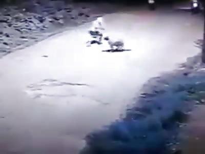 hit man in action! man shot to death ...