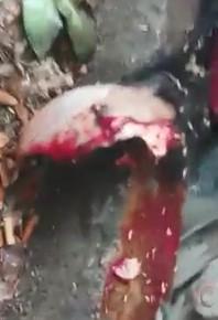 Woman Has Skull Cracked by Truck in Cikarang, West Java, Indonesia