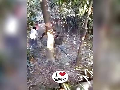 Leopard human conflict at Raichanga village, Falakata in Dooars