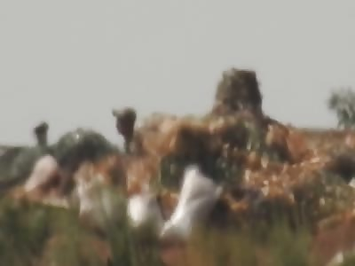 DNR sniper kills soldier ZSU