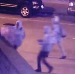 3 Thugs Brutally Murder Elderly Woman in DC