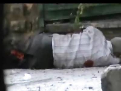 Elderly Unarmed Man Shot by Sniper as He Crawls