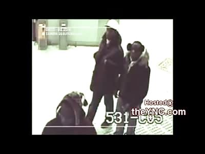 Group of Blacks Attack 22yo Bulgarian Student Throwing him on Train Tracks Breaking His Back
