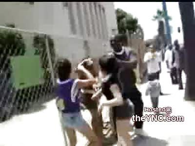 Crazy Girls Fight Like Wild Animals