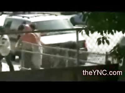 Mans Head sets Off Car Alarm in Trashy Ghetto Fight