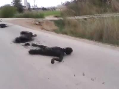 Charred Bodies Line the Streets in Bizarre Scene