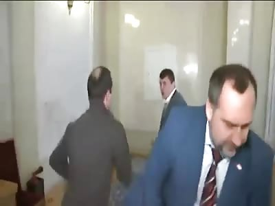 Ukrainian politicians fist fighting in parliament
