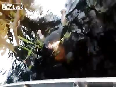 **Warning: Graphic** Drowned Man Found Eaten by Piranhas