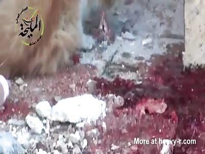 Goat fucker cat food !