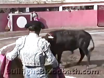 Animal cruelty 2.