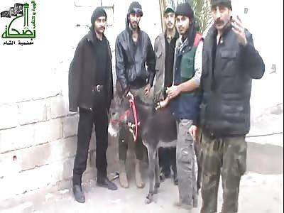 Mujahideen brigade kills a donkey to eat...